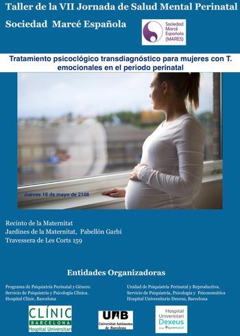 Taller VII Jornada de Salud Mental Perinatal- Dexeus