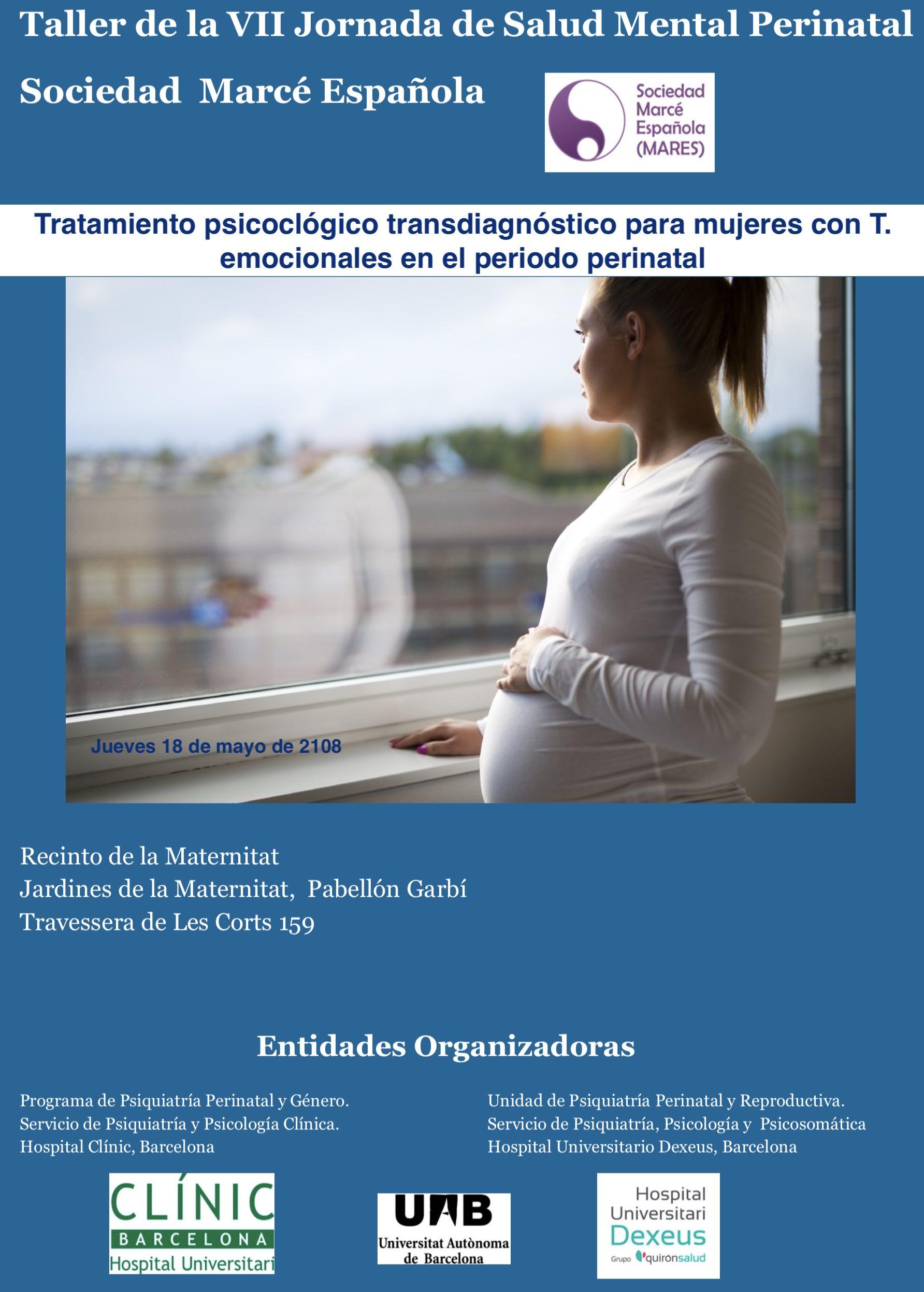 Taller VI Jornada de Salud Mental Perinatal