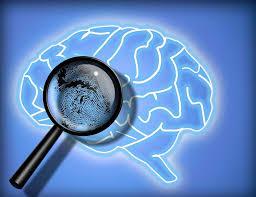 ¿Qué es la Psicología Forense? - Psicología Forense Dexeus